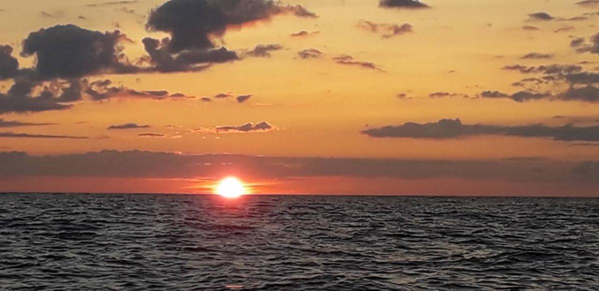 Päikeseloojang muulil